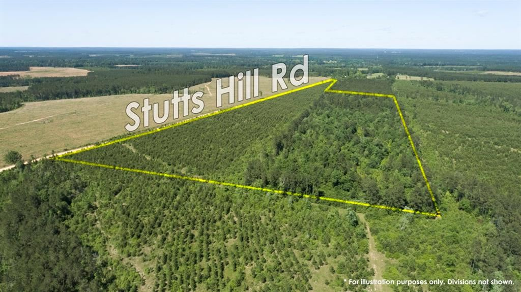 00000 Stutts Hill Road, Livingston, TX 77351 - MLS#: 81470911
