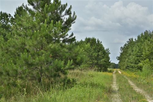 Photo of 0 Daw Collins Road, Cleveland, TX 77328 (MLS # 18557922)