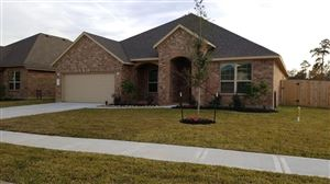 Photo of 14300 Congaree Court, Conroe, TX 77384 (MLS # 35204928)