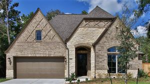 Photo of 18802 Capalona Court, New Caney, TX 77357 (MLS # 86201929)