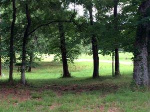 Photo of 0011 Woodlands Drive, Trinity, TX 75862 (MLS # 43089936)