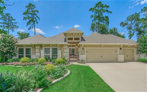 Photo of 10 Lufberry Place, The Woodlands, TX 77375 (MLS # 6948941)
