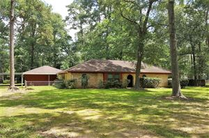 Photo of 171 Dogwood Trail, New Caney, TX 77357 (MLS # 92561949)