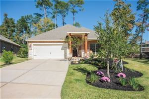 Photo of 98 Black Swan Place, Magnolia, TX 77354 (MLS # 67367966)