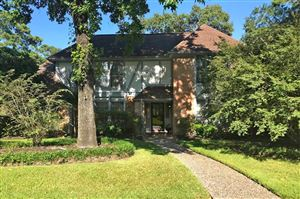 Photo of 1366 Trailwood Village Drive, Houston, TX 77339 (MLS # 65928972)