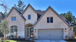 Photo of 205 Bronze Bow Drive, Montgomery, TX 77316 (MLS # 78414976)