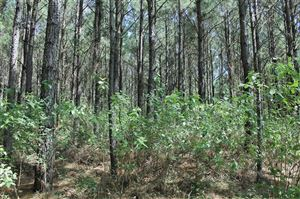 Photo of 30 Acres Round Prairie Road, Huntsville, TX 77320 (MLS # 24029996)