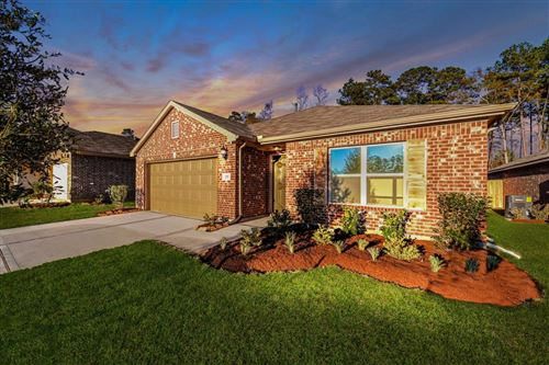 Photo of 171 Courageous Side Way, Magnolia, TX 77354 (MLS # 80673998)