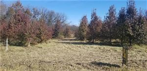 Photo of S State Route Y, Belton, MO 64012 (MLS # 2165316)