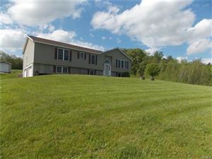 Photo of 28 Rolling Meadows Road, White Sulphur Spring, NY 12787 (MLS # 4913008)
