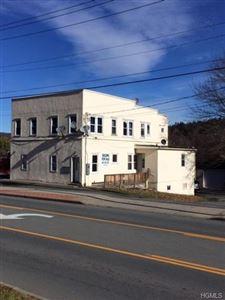 Photo of 167 Mill Street, Liberty, NY 12754 (MLS # 4911011)