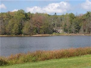 Photo of Pine Lake Drive, Wurtsboro, NY 12790 (MLS # 4900022)