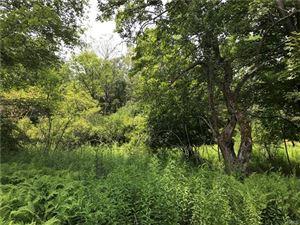 Photo of Hurd & Parks Road Tr 47, Bethel, NY 12720 (MLS # 4992031)