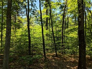 Photo of Plank Road, Forestburgh, NY 12777 (MLS # 4994033)