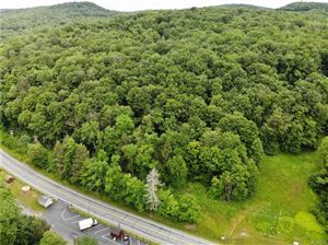 Photo of (Lot 2) State Route 55, Neversink, NY 12765 (MLS # 4534035)