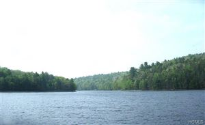Photo of Lot #3 Old Plank Road, Forestburgh, NY 12777 (MLS # 4910038)