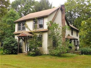 Photo of 193 Creek Road, Pleasant Valley, NY 12569 (MLS # 4844041)