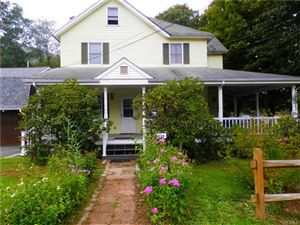 Photo of 133 Old Mill Road, East Branch, NY 13783 (MLS # 4849045)