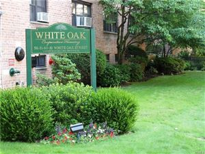 Photo of 61 White Oak Street, New Rochelle, NY 10801 (MLS # 4836049)