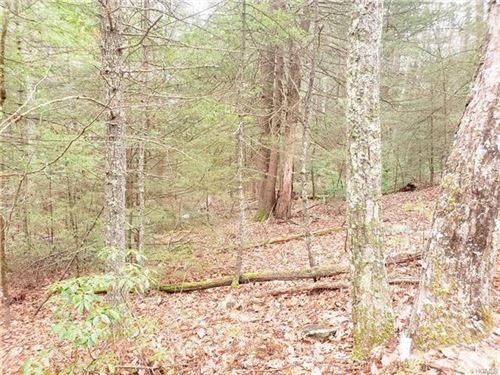 Photo of Rio Dam Road, Glen Spey, NY 12737 (MLS # 6012058)
