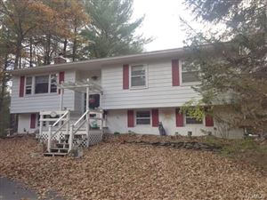 Photo of 20 Frazier Road, Eldred, NY 12732 (MLS # 4648063)