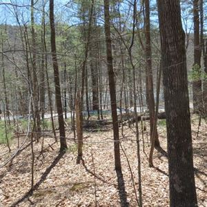 Photo of Dry Brook Road, Barryville, NY 12719 (MLS # 4851065)