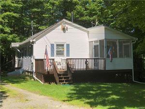 Photo of 4 Anawanda Lake Road, Roscoe, NY 12776 (MLS # 5025065)