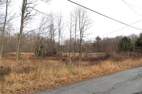 Photo of Painter Hill Road, Wurtsboro, NY 12790 (MLS # 6010071)