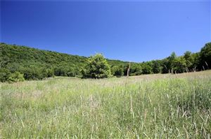 Photo of 0 William Brown Road, Fremont Center, NY 12736 (MLS # 5063099)