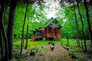 Photo of 89 Purple Sage Drive, Barryville, NY 12719 (MLS # 4921102)