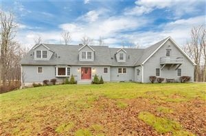 Photo of 845 Cold Spring Road, Clinton Corners, NY 12514 (MLS # 4855105)