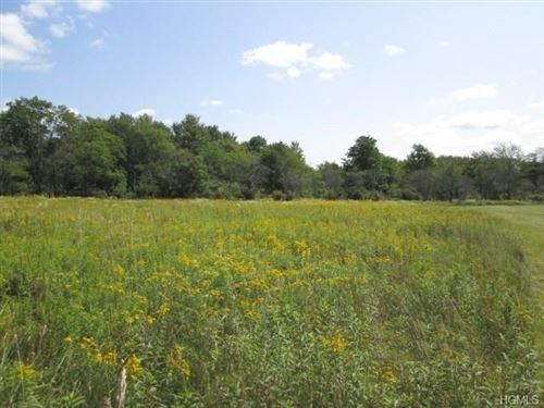 Photo of 362 Breezy Hill Road, Parksville, NY 12768 (MLS # 5056112)