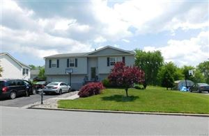 Photo of 17 Watkins Drive, Walden, NY 12586 (MLS # 4824113)