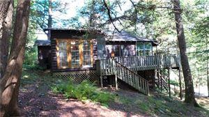 Photo of 26 Tomahawk Trail, Smallwood, NY 12778 (MLS # 5085124)