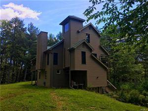 Photo of 633 Swamp Pond Road, Narrowsburg, NY 12764 (MLS # 4954149)