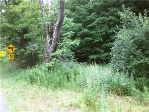 Photo of County Route 125 Road, Callicoon Center, NY 12724 (MLS # 4995154)