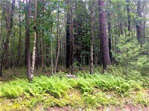 Tiny photo for Mud Pond Road, Highland Lake, NY 12743 (MLS # 5015166)