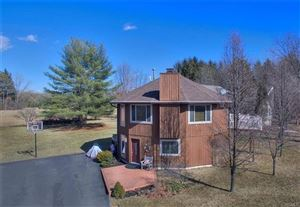 Photo of 1334 Sleepy Hollow Road, Athens, NY 12015 (MLS # 4927184)