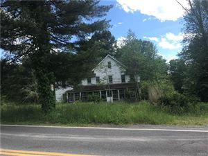 Photo of 1153 Ulster Heights Road, Ellenville, NY 12428 (MLS # 4964199)