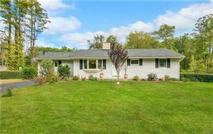 Photo of 1185 Indian Springs Road, Pine Bush, NY 12566 (MLS # 4808207)