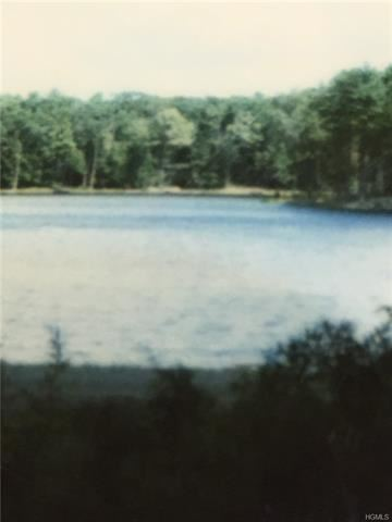 Photo of Lot 56 Timber Lake Drive, Highland, NY 12528 (MLS # 6002211)