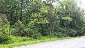 Photo of 484 North Quaker Hill Road, Pawling, NY 12564 (MLS # 5034218)