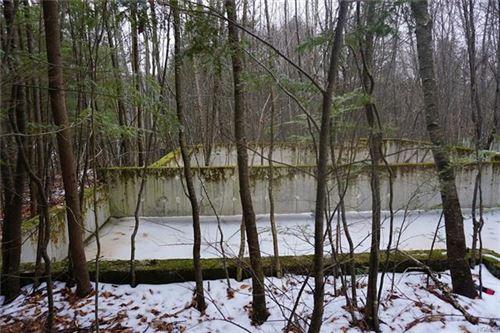 Tiny photo for Lake Shore Drive, Monticello, NY 12701 (MLS # 6010225)