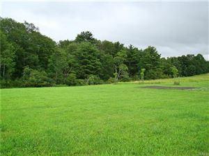 Photo of (18.5) Dr Duggan Road, Bethel, NY 12720 (MLS # 4995229)