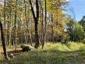 Photo of Youngs Hill Road, Liberty, NY 12754 (MLS # 4846273)