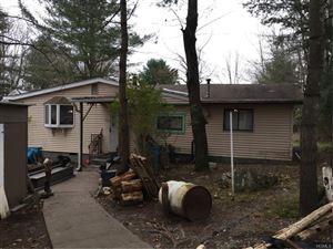 Photo of 76 Britman Road, Mongaup Valley, NY 12762 (MLS # 4852283)