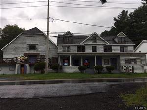 Photo of 6692 State Route 52, Lake Huntington, NY 12752 (MLS # 5021293)