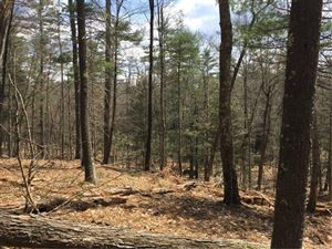 Photo of (48 & 49) Airport Road, Eldred, NY 12528 (MLS # 4819298)