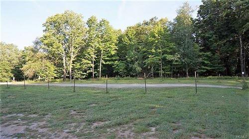 Tiny photo for 1319 Nys Hwy 17b, White Lake, NY 12786 (MLS # 6007311)