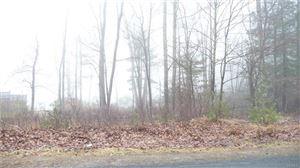Photo of Surrey Street, Rock Hill, NY 12775 (MLS # 4904312)